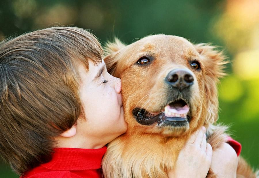 Ребенок собака овен