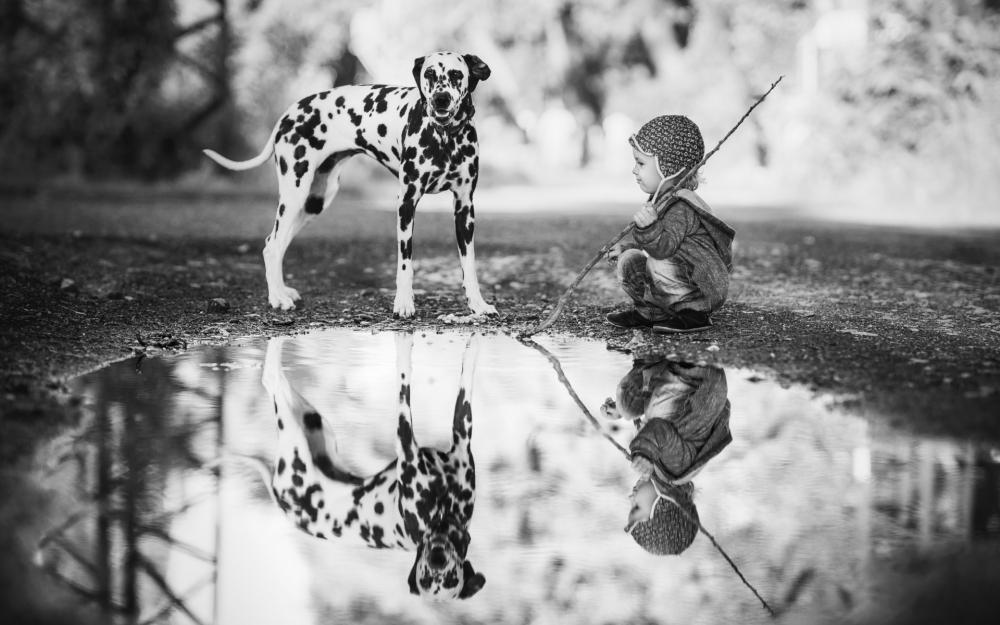 Собака и новорожденный. Чтобы собака меньше ревновала, необходимо выделить дополнительное время для занятий с ней.