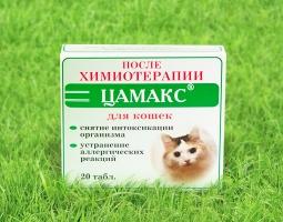 ЦАМАКС после химиотерапии для кошек