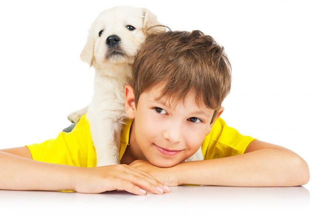Научите собаку терпеливо относиться к общению с детьми